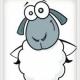 超人的小羊
